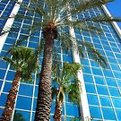 The Vegas Palms by Samantha  Lauren