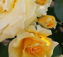 """Gold Bunny Trio"" by Gail Mew"