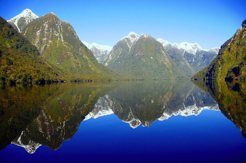 Doubtful Sound Reflections by chriso
