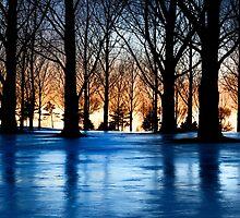 Snowsheen by SandraNightski