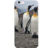 King Penguins on Parade iPhone Case/Skin
