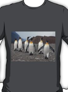 King Penguins on Parade T-Shirt