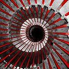 spiral by Brett Trafford