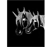 my unicorns Photographic Print