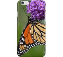 Butterfly Fluttering By iPhone Case/Skin