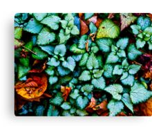 Dances With Leaves Canvas Print