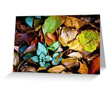 Autumn Blanket Greeting Card