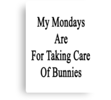 My Mondays Are For Taking Care Of Bunnies  Canvas Print