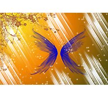 Wings of Light Photographic Print