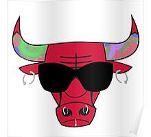 Rodman Bulls Logo Poster
