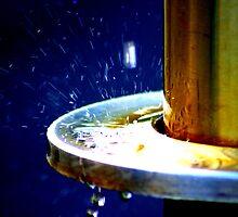 Splash One by Daniel Kazor