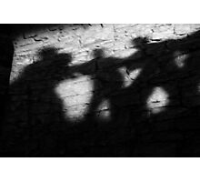 Shadows on the Wall Photographic Print