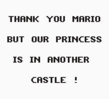 Thank you Mario by Vinchtef