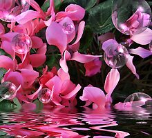 """""""Pink & Bubbly"""" by debsphotos"""