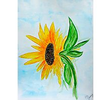 Sunflower Sue Photographic Print