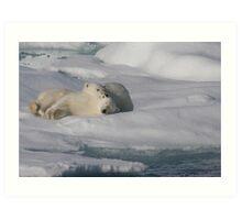 Resting Cubs Art Print