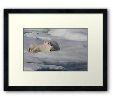 Resting Cubs Framed Print
