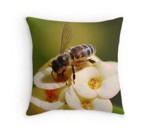 On the mountain, California, USA, Huntington Garden Throw Pillow