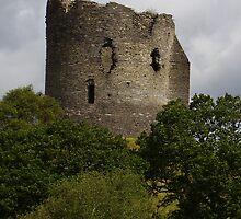 Dolbadarn Castle in Wales by tonymm6491