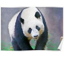 Stylized photo of Su Lin, the third giant panda to be born at the San Diego Zoo, San Diego CA. Poster