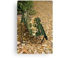 Leaves on Bench Canvas Print