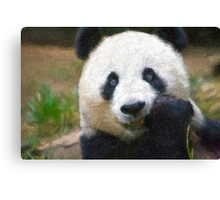 Stylized photo of Bai Yun, a giant panda. Hers was the first successful birth of a giant panda at the Wolong Giant Panda Research Center in China.  Canvas Print