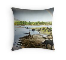 Affric stumps and rainbow Throw Pillow