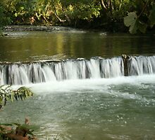 Waterfall in the park. by SteveRich