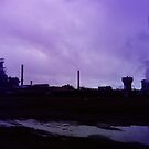 A Dying Industry by Andrew Pearce