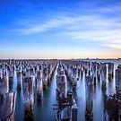 Princes Pier by Trevor Middleton