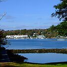 Northwest Arm from Dingle Park by murrstevens