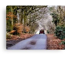 Down the Farm Road Canvas Print