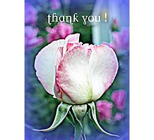 Sheer Bliss bud, Thank You Photographic Print