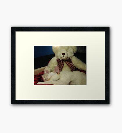 Snuggle Bear Framed Print