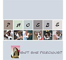 Little Phoebe Photographic Print