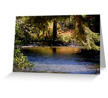 REFLECTION ON YAKIMA RIVER Greeting Card