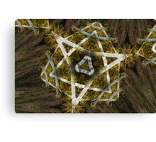 Natural Star of David Canvas Print
