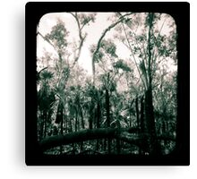Bush Country Canvas Print