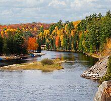 Muskoka River 2 by Gracey