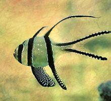 fishy 02 by Aimelle