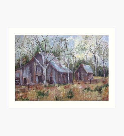 Barns Art Print