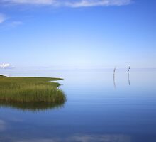 Skaket Blue Sky. by capecodart