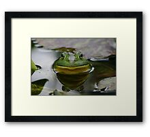 You lookin' at me bub? Framed Print