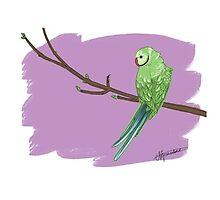 Birds of a Feather by anniegbosch