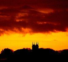 Evening Silhouette by Sean Boyce