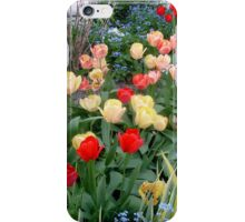 A small ,small garden with tulips iPhone Case/Skin