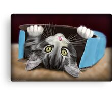 Painting of a Cute Grey Kitten in an Blue Box Canvas Print