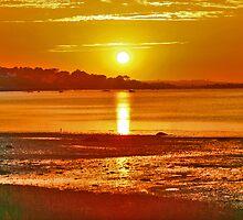 Sunset Cove by Christopher  Malatesta