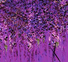 Deeper Shade of Purple-Available As Art Prints-Mugs,Cases,Duvets,T Shirts,Stickers,etc  by Robert Burns