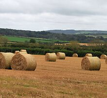Straw Bales by cwwphotography